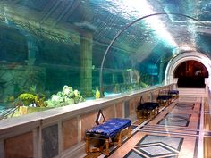 Domestic aquarium