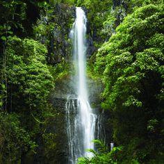Linger on in Hana: Wailua Falls splashes 95 feet through dense forest below Hana.