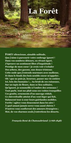 Chateaubriand, La Forêt | À la française … Basic French Words, How To Speak French, Learn French, Ap French, French Poems, French Quotes, French Learning Books, French Language Lessons, Some Good Quotes
