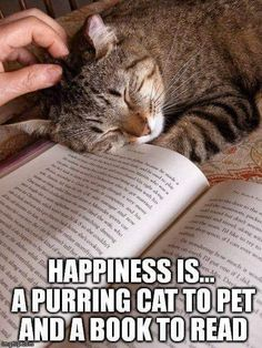 Happiness is. a purring cat to pet and a book to read. Cute Funny Animals, Cute Cats, Funny Cats, I Love Books, Good Books, Books To Read, I Love Cats, Crazy Cats, Dog Quotes