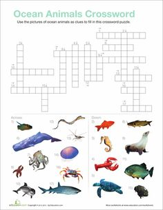 Worksheets: Ocean Animals Crossword