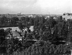 Kaisaniemi   Brander Signe HKM 1907   Helsingin kaupunginmuseo   Kaisaniemi. Etualalla vasemmalla Ilmatieteen laitos ja takana urheilukenttä. Kuvattu Puutarhakatu 4:stä pohjoiseen. -- negatiivi ja vedos, lasi paperi pahvi, mv