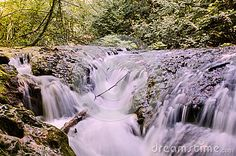 Photo about Mountain river in forest in Romania, Caras Severin County. Image of nature, summer, environment - 89698082 Nature Images, Vectors, Waterfall, Environment, Sign, River, Stock Photos, Summer, Free