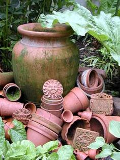 Terracotta pots with greenery