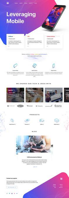 Web v1
