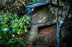 Africa Travel, Bed And Breakfast, Outdoor Gear, Eco Friendly, Tent, Camping, Nature, Image, Cabin Tent