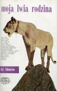 """""""Moja lwia rodzina"""" (Born Free) Joy Adamson Translated by Józef Giebułtowicz Cover by Janusz Grabiański (Grabianski) Book series Naokoło Świata Published by Wydawnictwo Iskry 1967"""