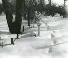 Crescent Park in Winter | saskhistoryonline.ca
