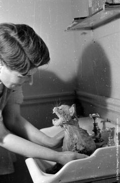 Jean Durlacher washing her pet cat at her home in London. (Photo by Kurt Hutton/Picture Post/Getty Images). 21st September 1946