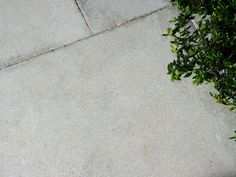 Chalford Limestone Pavers - Natural Stone Flooring by Eco Outdoor Brick Paving, Concrete Pavers, Paving Stones, Limestone Pavers, Rectangular Pool, Natural Stone Flooring, Travertine Tile, Garden Paths, Garden Projects