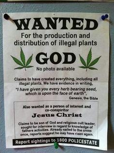 God weed jesus christ bible liegalize hemp