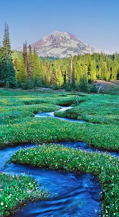 Three Sisters Wilderness, Oregon. Go to or just click on photo for home videos and much more on sites like this.
