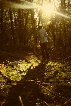 An enchanted photo shoot in the woods by Miguel da Silva Fotografia De  Caminhadas 0f48f19d3a5