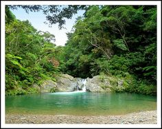 THE DEEP EMERALD POOL AT THE FOOT OF THE UPPER FALLS  ALONG IE RIVER in NORTHERN OKINAWA