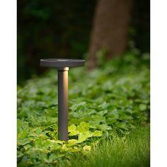 Lampa ogrodowa stojąca Zefra 80 Led dostępna w dwóch rozmiarach. http://blowupdesign.pl/pl/38-lampy-ogrodowe-zewnetrzne-tarasowe-patio# #słupekogrodowy #lampyogrodowe #lampyzewnętrzne #oświetlenieprzedodmem #outdoorlighting