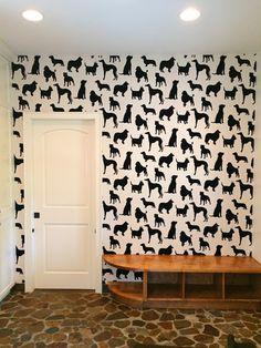 Best of show dog wallpaper