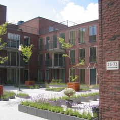 Daktuinen Zuidpoort Delft