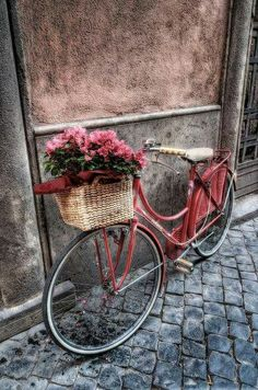 """Pink vintage bicycle with basket of pink flowers. """"Flowers On the Bicycle' Photo by Pandarino. Bicycle Basket, Old Bicycle, Bicycle Art, Old Bikes, Bike Baskets, Bicycle Decor, Bicycle Design, Pink Paris, Jolie Photo"""