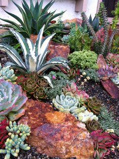 Desert Landscaping Ideas Nice succulent garden by 26 Blooms Succulent Landscape and… Succulent Rock Garden, Succulent Landscaping, Succulent Gardening, Diy Garden, Cacti And Succulents, Shade Garden, Planting Succulents, Backyard Landscaping, Landscaping Ideas