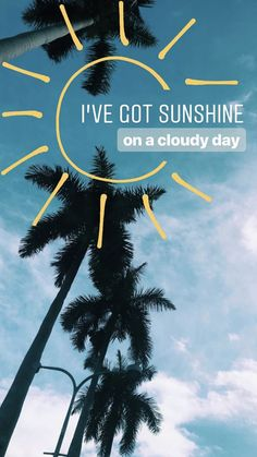 Ideas Palm Tree Quotes Florida For 2019 Creative Instagram Stories, Instagram Story Ideas, Instagram Quotes, Insta Ideas, Miami Quotes, Florida Quotes, Florida Travel, Miami Florida, Story Inspiration