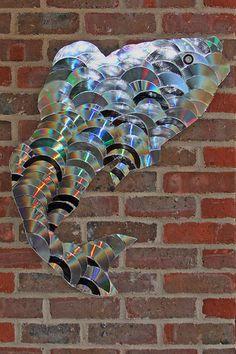 CD fish by Leo Reynolds, via Flickr