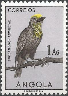 FRANCOBOLLI ANGOLA | Angola 1951 - Endemic bird species - Michel 339/362 - Catawiki