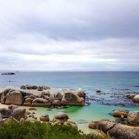 Cape Peninsula Full Day Tour - Africa Elite Travel | Private Tours