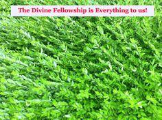 The Divine Fellowship is Everything to us! More via, www.agodman.com