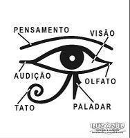 New Eye Tattoo Ideas Horus Ideas Body Art Tattoos, Tatoos, Eye Of Horus, Book Of Shadows, Tattoo Studio, Tattoo Inspiration, Iphone Wallpaper Nasa, Piercings, Black And White Drawing