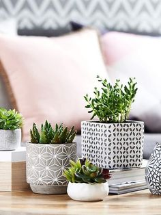 29 Tips for a perfect coffee table styling - Moderne Inneneinrichtung Coffee Table Styling, Decorating Coffee Tables, Coffee Table Plants, Desk Styling, Contemporary Home Decor, Modern Decor, Modern Room, Contemporary Apartment, Contemporary Chandelier