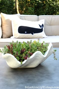 Easiest way to plant succulents - tips on planting and forgetting it! Love this clam shell from HomeGoods turned outdoor planter eclecticallyvintage.com sponsored pin