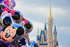 Did you know it's just $200 down to reserve your Disney trip? Make payments as you like (no set payment schedule!) and the final payment is due 45 days before check in. Contact me today for your quote! jodi@cupcakecastlestravel.com