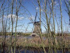 Os Moinhos de Kinderdijk. by Elias Rovielo, via Flickr
