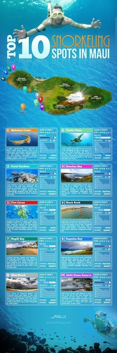 10 Snorkeling Spots in Maui Top 10 Maui snorkeling spots guide Come & visit the that most people never see! in at Top 10 Maui snorkeling spots guide Come & visit the that most people never see! Hawaii 2017, Hawaii Life, Maui Hawaii, Trip To Maui, Hawaii Vacation, Vacation Trips, Hawaii Trips, Oahu, Maui Travel