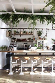 Pinpenny Scott On Place  Pinterest  Coffee Coffee Shop Fascinating Coffee Shop Kitchen Design Inspiration Design