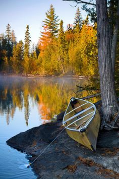 Misty Autumn Lake