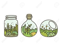 Plants in terrariums set. Moss, succulents and flowers in glass jars. Plants in terrariums set. Moss, succulents and flowers in glass jars. Kawaii Doodles, Cute Doodles, Kawaii Art, Flower Doodles, Kawaii Drawings, Doodle Drawings, Easy Drawings, Simple Cute Drawings, Drawing Sketches