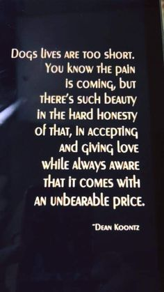 I know I am partial to Boston Terriers but there is something beautiful about all people who love their dogs! This quote by Dean Koontz crosses all breeds and is so, so very true. Fukuoka, I Love Dogs, Puppy Love, Pet Loss Grief, Yorkshire Terrier Puppies, Boston Terriers, Dog Rules, Rainbow Bridge, Animal Quotes