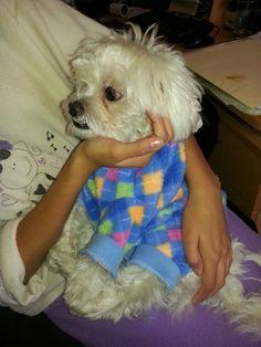 Con mi pijama,  listo para dormir.