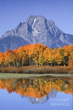 Fall Reflection At Oxbow Bend; Grand Teton National Park; photo by Sandra Bronstein