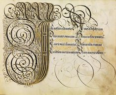 Eclectic historic science and art images from rare books and prints Illuminated Letters, Illuminated Manuscript, Types Of Lettering, Hand Lettering, Decorative Lettering, Medieval Manuscript, Calligraphy Letters, Penmanship, Art Images