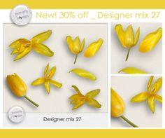 https://www.digitalscrapbookingstudio.com/commercial-use/elements/designer-mix-27-by-butterflydsign/