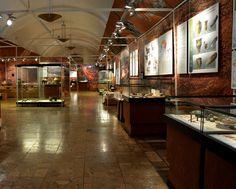#State #Archaeological #Museum #Warsaw #PMA #Archaeology #archeologia #muzeum #zabytki #wystawa