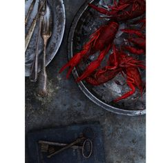 Or crayfish. But crawfish. My fav food in the world. Dark Food Photography, Still Life Photography, Food Styling, Fish And Seafood, Food Pictures, Food Art, Love Food, Food Inspiration, Food Photography