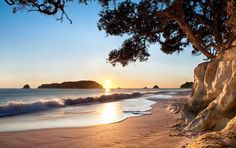 Things to do, activities and backpacker hostels in the Coromandel, New Zealand.