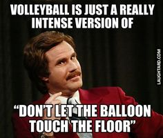 What Volleyball really is #funnypictures #lmao #hilarious #funnypics…