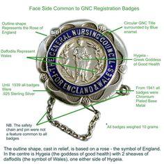 SRN badge (State Registered Nurse from Great Britain) Nursing Board, Nursing Pins, Nursing Notes, Nursing Scrubs, Nurse Pics, Nurse Stuff, Registered Nurse School, Nurse Art, Nurse Badge