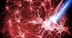 Οι νευρικές οδοί είναι σαν λεωφόροι των νευρικών κυττάρων που μεταδίδουν μηνύματα. Ταξιδεύουμε μέσω της λεωφόρου πολλές φορές, και το μονοπάτι γίνεται ολοέ