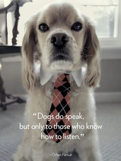 Quotes About Dogs - Dog Quotes - Good Housekeeping
