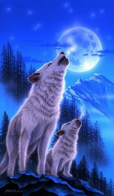 Wolf - Painting Art by Kentaro Nishino - Nature Art & Wildlife Art - Airbrushed Wildlife Art. Beautiful Wolves, Animals Beautiful, Cute Animals, Wolf Photos, Wolf Pictures, Wolf Love, Wolf Spirit, Spirit Animal, Tier Wolf